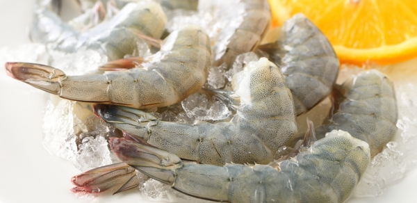 India's shrimp exports to the US rises by 14 pct in January-June 2019