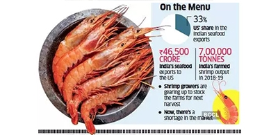 Shrimp exports to US likely to recover