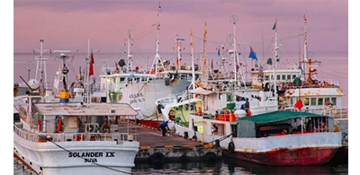 Temporary suspension of new crew members on foreing tuna vessels